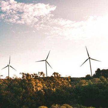 Sostenibilità: board e CDA in ritardo nelle competenze
